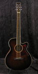 Tanglewood TW4 WB 2016